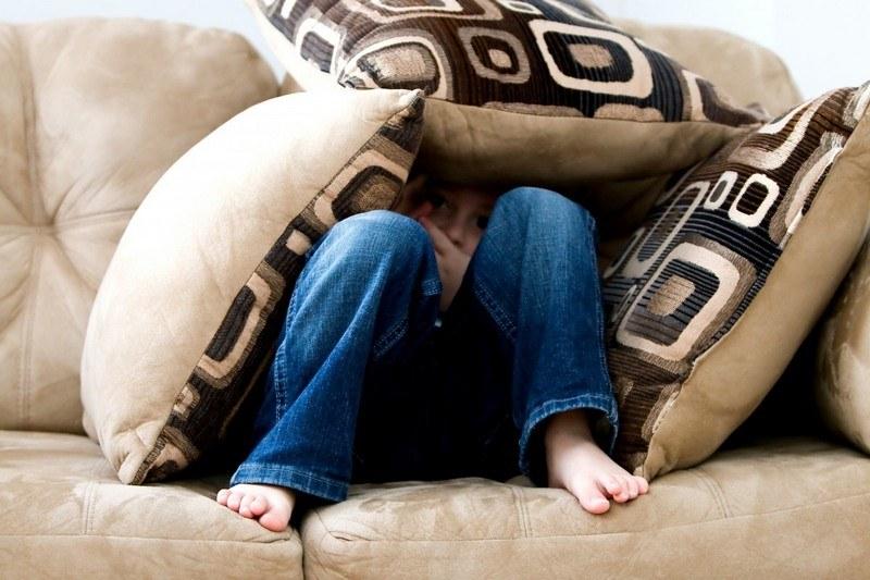 Запах мочи с дивана - как вывести быстро