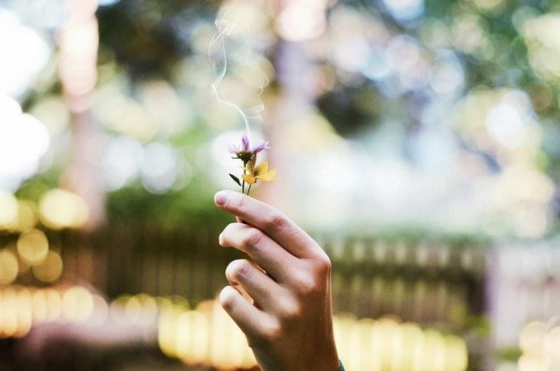 Как убрать запах сырости дома