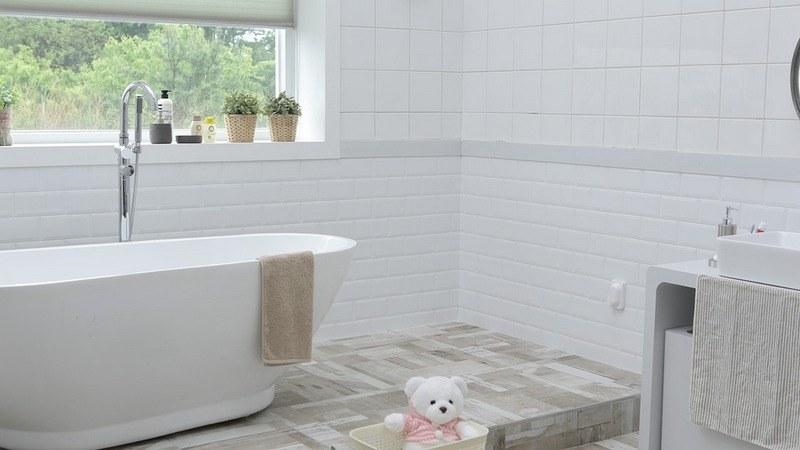 Причины появления грибка в ванной