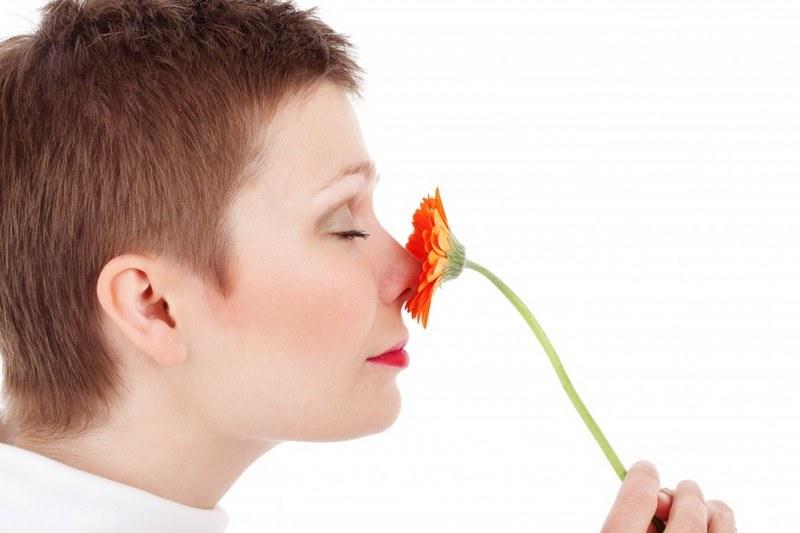 Запах сырости в квартире - как избавиться