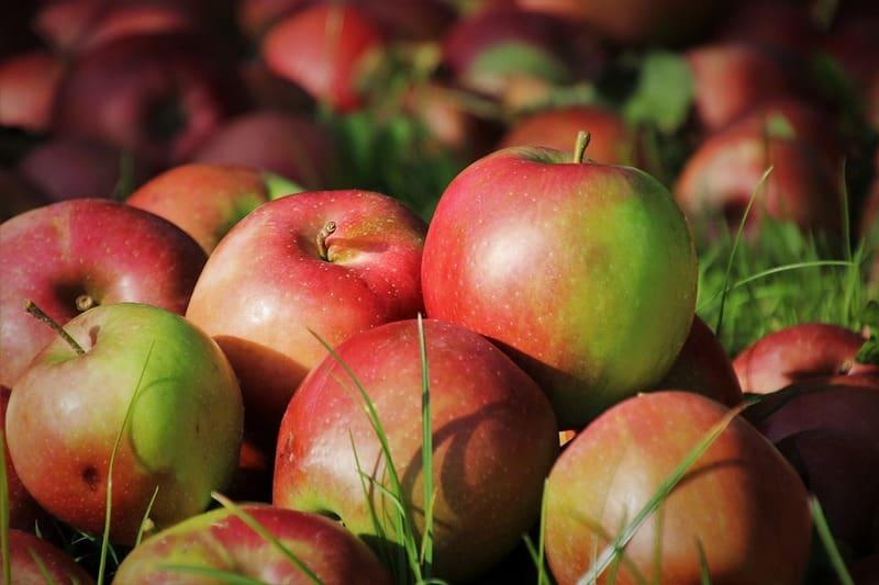 Сколько килограмм в мешке яблок